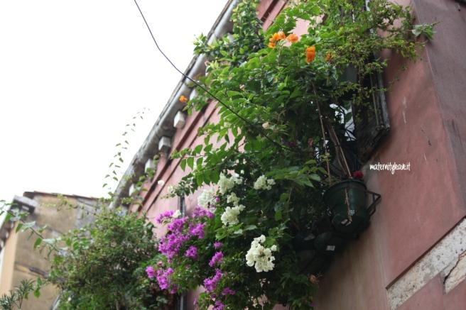 balconi fioriti a venezia