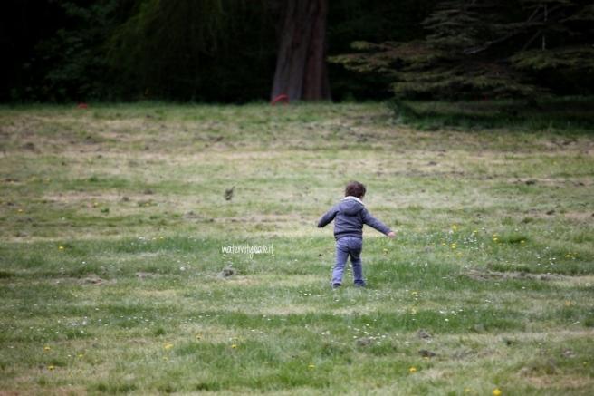 correre