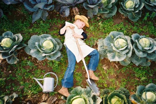 the gardener jan von holleben