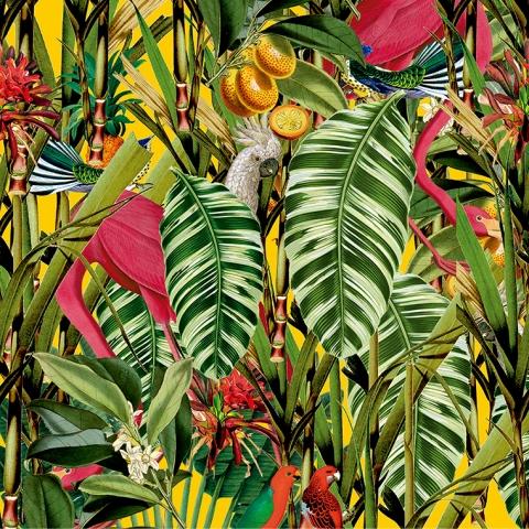 detalle-plancha-jungle-760x760